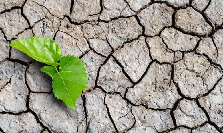 I mutamenti climatici? Indebite appropriazioni di spazi ecologici