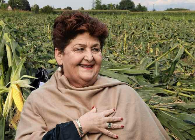 La dimissionaria Bellanova, paladina degli OGM