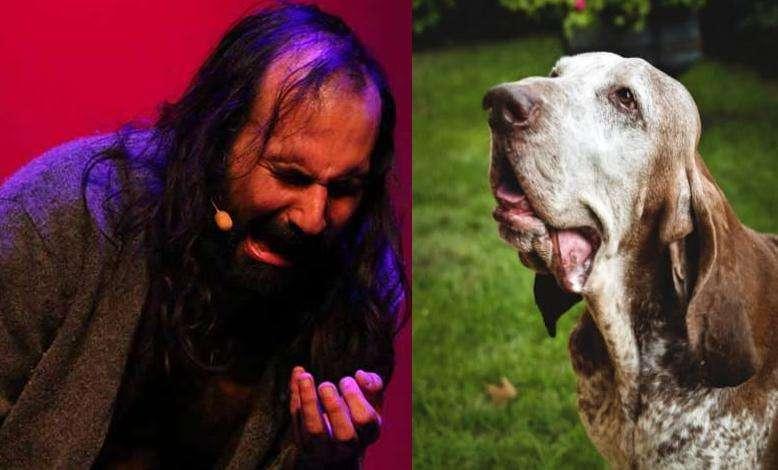 Vicidomini: lettera sui cani