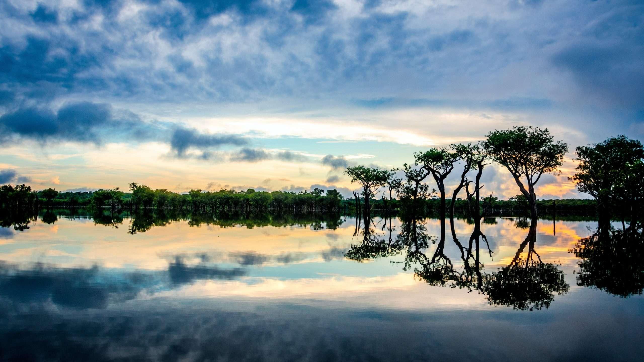 Amazzonia. Photo by Sébastien Goldberg